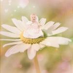 Babyfotografie_2