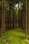 Landschaft_12