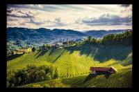 Landschaft_36
